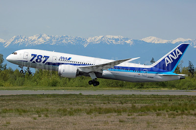 ANA (All Nippon Airways) Boeing 787-8 Dreamliner JA818A (msn 42243) 