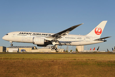 JAL-Japan Airlines Boeing 787-8 Dreamliner JA828J (msn 38438) PAE (Royal S. King). Image: 909241.
