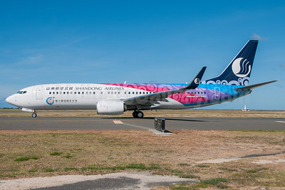 Shandong Airlines Boeing 737-85N WL B-5786 (msn 39127) (Tenth China Art Festival) HNL (Ivan K. Nishimura). Image: 913262.