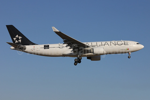 TAP Portugal Airbus A330-223 CS-TOH (msn 181) (Star Alliance-15 Years) LIS (Pedro Baptista). Image: 908873.