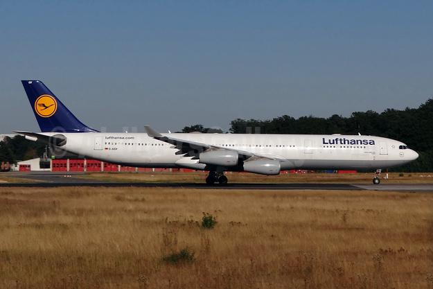 Lufthansa Airbus A340-313 D-AIGY (msn 335) FRA (Paul Bannwarth). Image: 930616.