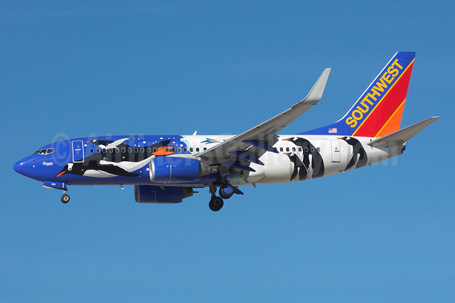 "Southwest's special ""Penguin One"" logo jet"